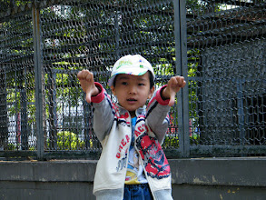 Photo: benzrad 朱子卓, brought son, warrenzh 朱楚甲, visit zoo and treat bears, pigs, dears with pork and vegetable we bought. lots of side watchers in the zoo when animals enjoy the snack we offered. here warrenzh near wild pig's cage posed for shot before we departing the zoo.