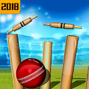 Top Cricket Ball Slope Game