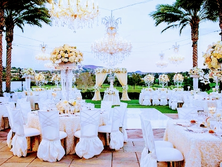 Chameleon Chair rentals exclusively available at By Dzign Las Vegas.  The Chameleon chair is the perfect icing on your wedding or corporate event.