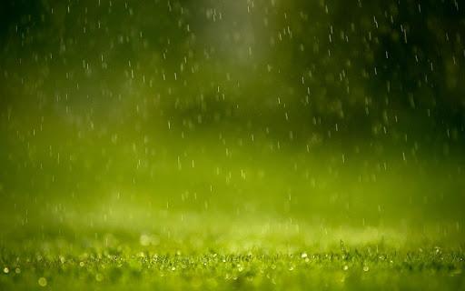 雨のテーマ
