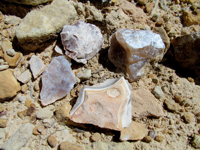 Chunks of chert