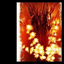 Photo: Home decor - lighted flowers in a vase #gplus - via Instagram, http://instagr.am/p/J3A8-MJfnp/