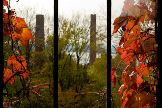 Photo: View through window of tuberculosis pavilion in autumn, North Brother Island.