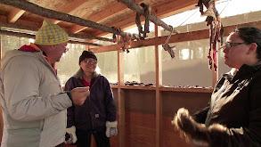 Alaskan Wilderness: Moose Fat & Muskrat thumbnail