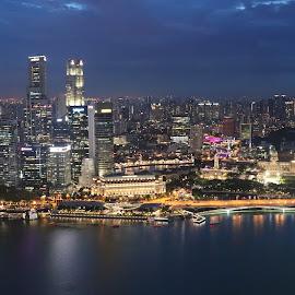 Singapore skyline by Barbara Pobjoy - City,  Street & Park  Skylines