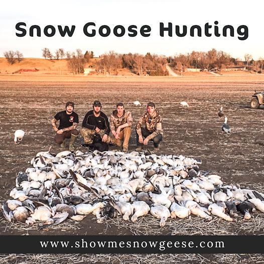 Goose Hunts