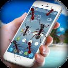 Ants on Screen - Ants in Phone Funny Joke icon