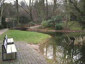 Photo: Die Teichbrücke mit Zufluß (der Abfluß in Richtung Silberbach befindet sich hinter der Brücke).