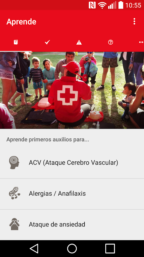 Cruz Roja Chilena- screenshot