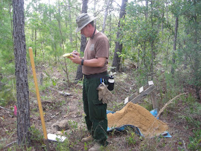 Photo: Bill Stanton in the forest, nice shovel test getting ready to be backfilled.