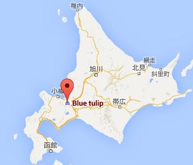 地図:ブルーチューリップ