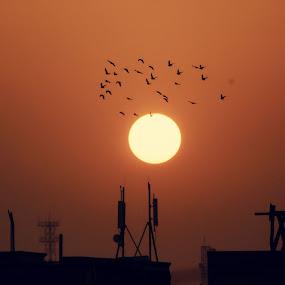capture eye by Arslan Mughal - Landscapes Sunsets & Sunrises