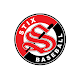 Download Stix Baseball Club For PC Windows and Mac