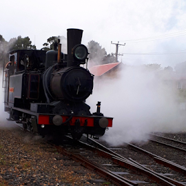 Mt Lyall ABT Engine by Peter Keast - Transportation Trains ( tourist, engine, steam train, railway, mining )