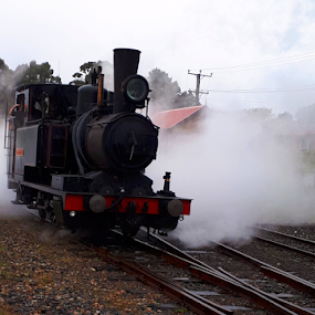 Mt Lyall ABT Engine by Peter Keast - Transportation Trains ( tourist, engine, steam train, railway, mining )