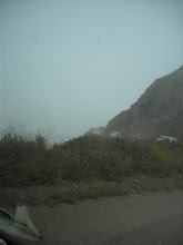 Photo: Heading up from Hwy 1 in the fog