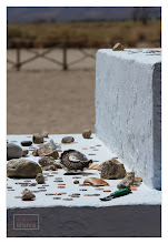 Photo: Eastern Sierras-20120715-145