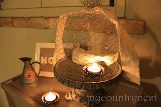 Photo: alzata con rete conigliera