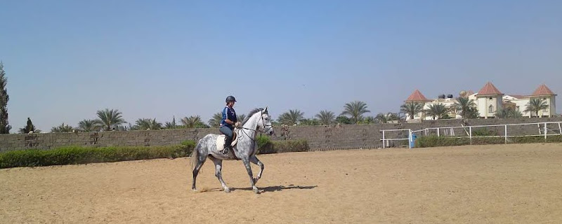 expat woman in cairo egypt working at a horse riding club riding a horse with a view of a palace