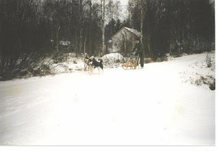 Photo: Lumirinteen Chiniaki ja Lumirinteen Denali 1995
