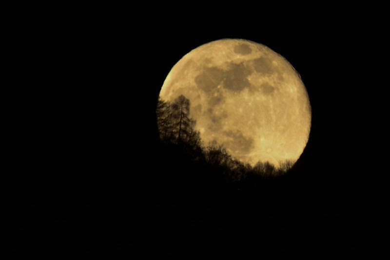 Notte... di barbara_da_ronch