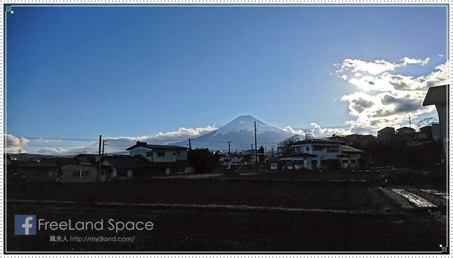 新倉山淺間公園9.JPG
