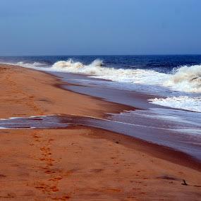 the shore by Rita Uriel - Landscapes Beaches ( water, shore, sand, waves, ocean, beach, foam,  )