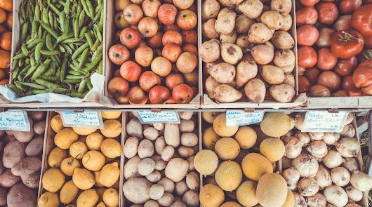 La exportación española de frutas y hortalizas crecen un 5,5 % en 2019