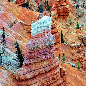 Bryce Canyon Monolith* by Rob Bradshaw - Landscapes Caves & Formations ( utah, bryce canyon monolith, colorful landscape, bryce canyon, land formation, landscape )