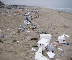 Image result for litter beach monterey