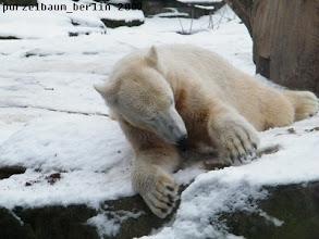 Photo: Im Schnee herumfriemeln ;-)