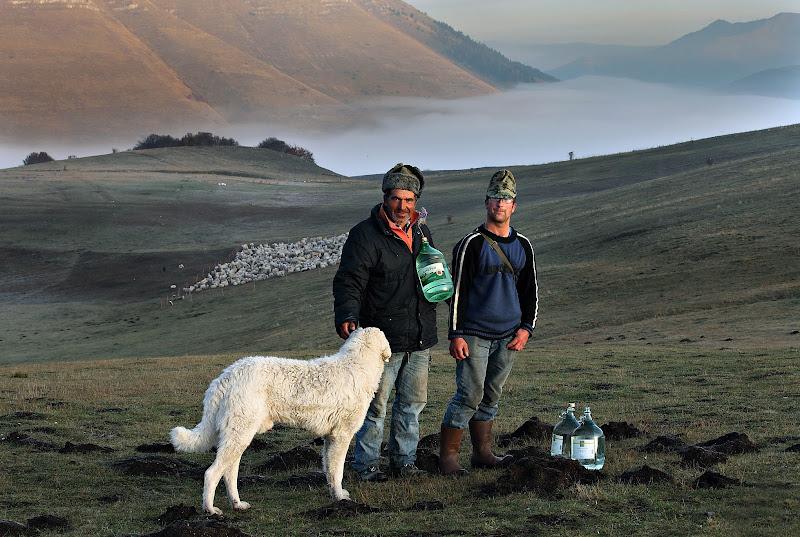 Pastori rumeni nella luce del primo mattino di Montanaro
