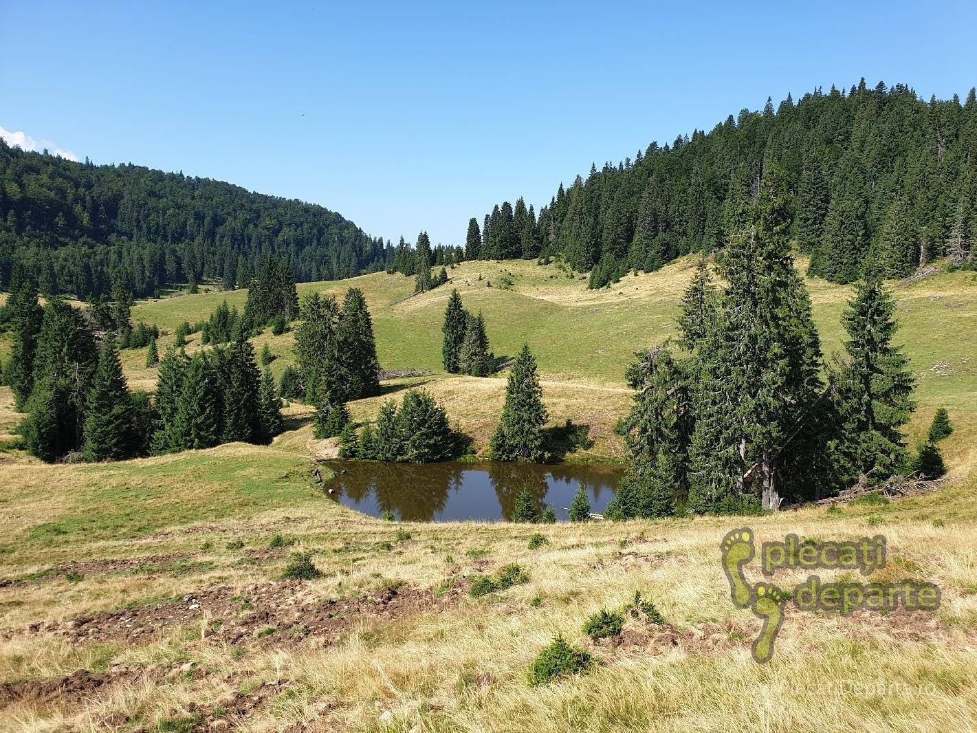 Peisaj montan Muntii Apuseni itrasee padis apuseni, parcul natural apuseni obiective turitice,