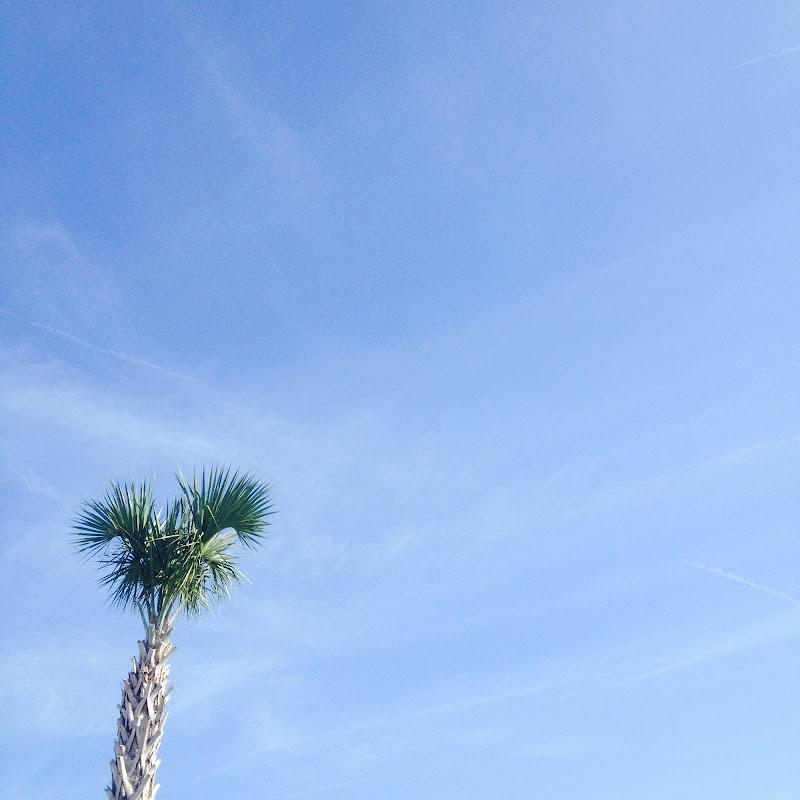 Natura nel blu di maya.agostino.7