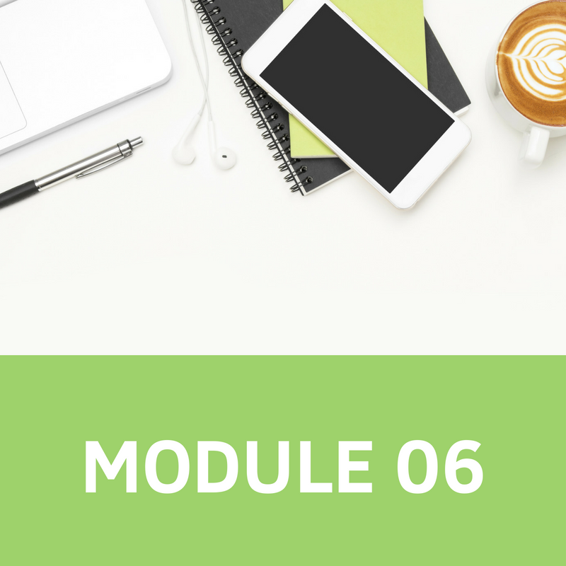 MODULE 06