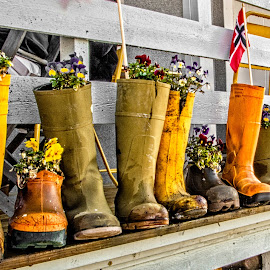 Boots by Richard Michael Lingo - Artistic Objects Other Objects ( planters, boots, norway, photo, artistic object,  )