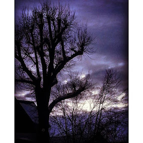 Twilight. by Dawn Morri Loudermilk - Instagram & Mobile Instagram ( photoshare, votoart )