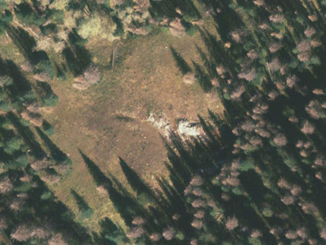 2006 satellite image showing large scrap lumber pile