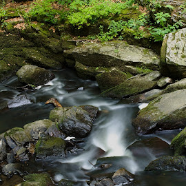 the river sings by Pavel Vrba - Nature Up Close Gardens & Produce ( rocks, nature, river )