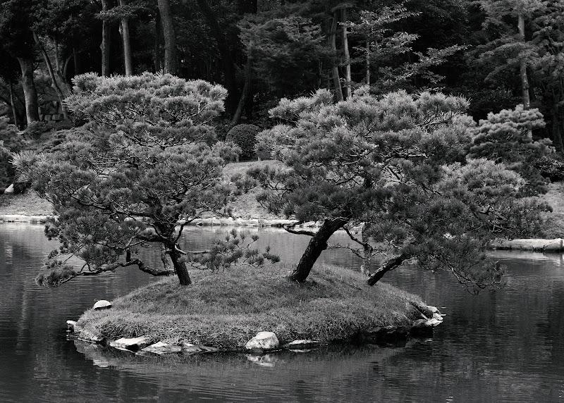 Little island di Rossana_Alfieri