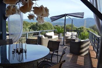 maison à Cognocoli-Monticchi (2A)