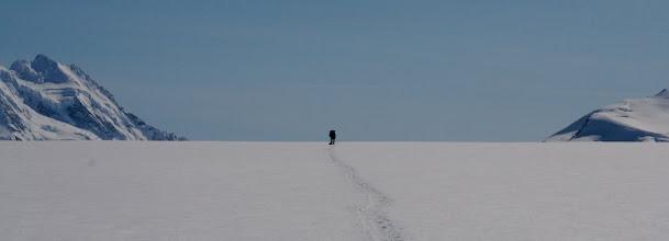 Photo: Snow desert. Seward Glacier.