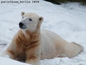 Photo: Dieser wunderbare Schnee muss aber auch genossen werden :-)