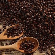 Roastery Espresso (Medium Roast) 1lb
