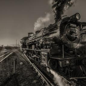 SteamySusan by Rob Vandongen - Transportation Trains (  )
