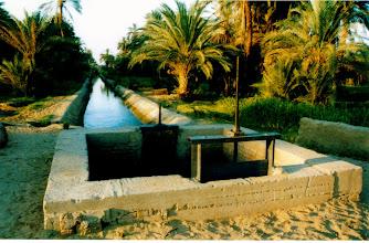 Photo: Bord du Nil