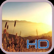 4k Summer Beatiful Wallpaper HD Download on Windows
