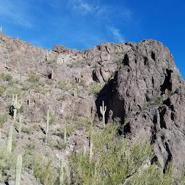 Rock Wall by Tom MostlyGerman - Landscapes Deserts