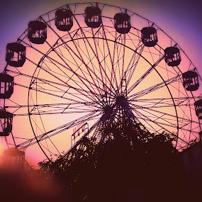 ...a joy ride. by Shafaly Sharma - City,  Street & Park  Amusement Parks ( pwcstilllife-dq )