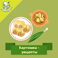 Картошка – рецепты блюд с фото apk